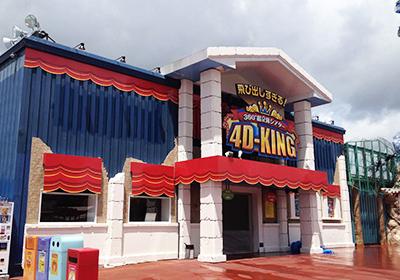 名古屋港シートレインランド<br>「4D-KING」